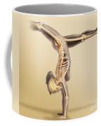 Female Skeletal System Coffee Mug