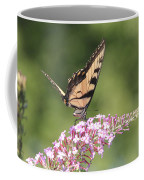 Female Tiger Butterly-1-featured In Macro-comfortable Art And Newbies Groups Coffee Mug