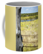 Fence Pasture Horse 14419 Coffee Mug