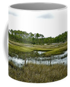 Fence Thru The Marsh Coffee Mug