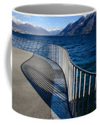 Fence With Shadow Coffee Mug