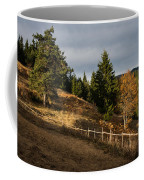 Fenced In Warm Autumn Light Coffee Mug
