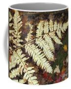 Fern In The Forest Coffee Mug