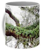 Resurrection Fern On The Limbs Coffee Mug