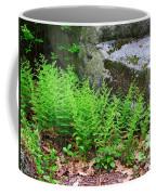 Fern Patch Coffee Mug