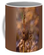 Fern Spore Stalk In Morning 2 Coffee Mug