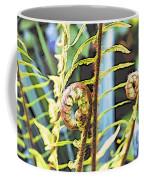 Fern Twirls Coffee Mug