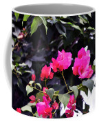 Fernwood Botanical Garden Bougainvillea Niles Michigan Usa Coffee Mug