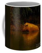 Ferrell Hog At Sunrise Coffee Mug