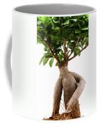 Ficus Ginseng Coffee Mug