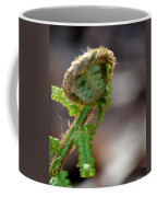 Fiddlehead 2 Coffee Mug