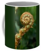 Fiddlehead Coffee Mug