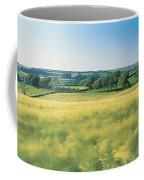 Field Near Barnstaple, North Devon Coffee Mug