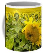 Field Of Blooming Yellow Sunflowers To Horizon Coffee Mug