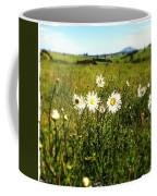 Field Of Flowers Coffee Mug by Les Cunliffe