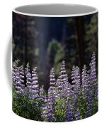 Field Of Summer Wildflowers Backlit Lupine  Coffee Mug