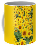 Field Of Sunflowers Helianthus Sp Coffee Mug
