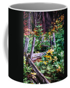 Fields And Fences Of Wawona In Yosemite National Park Coffee Mug