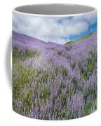 Fields Of Lupine 3 Coffee Mug
