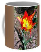 Fiery Beauty Coffee Mug
