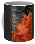 Fiery Orange Azalea  Coffee Mug