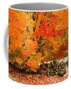 Fiery Rock Wall Coffee Mug