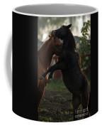 Fighting Coffee Mug