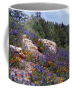 Figueroa Mountain Splendor Coffee Mug