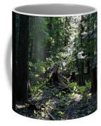 Filtered Sunlight Peace Coffee Mug