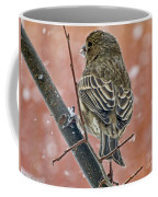 Finch On A Snowy Day Coffee Mug