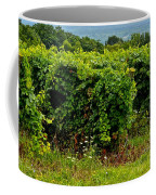 Finger Lakes Vineyard Coffee Mug by Frozen in Time Fine Art Photography
