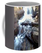 Finlay Park Waterfall Coffee Mug