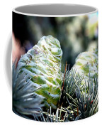 Fir Cone Coffee Mug