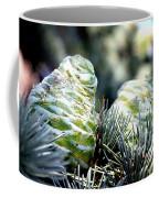 Fir Cone Coffee Mug