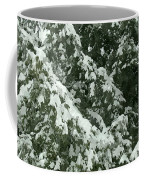 Fir Tree Branch Covered With Snow  Coffee Mug
