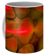 Fire And Earth Coffee Mug