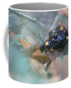 Fire Salamander Front View Coffee Mug