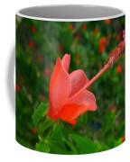 Firecraker Hibiscus Flower Coffee Mug