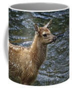 Firehole River Elk Fawn Coffee Mug