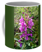 Fireweed In Katmai National Preserve-ak- Coffee Mug