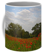 Firewheel Field Coffee Mug
