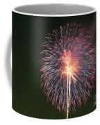 Fireworks At Night 9 Coffee Mug
