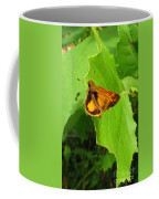 Firey Skipper Butterfly Coffee Mug