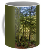 Firs And Ferns Coffee Mug