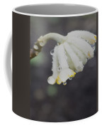 First Blossom Coffee Mug
