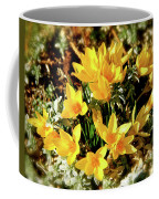 First Crocus Serenade Coffee Mug