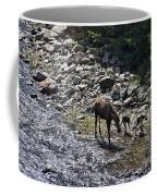 First Day Walking Coffee Mug