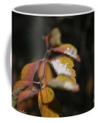 First Dusting Coffee Mug