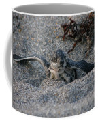 First Look Coffee Mug