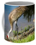 First Time At The Lake Coffee Mug